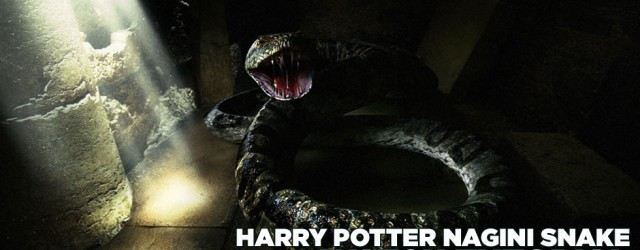 cinema 4d snake
